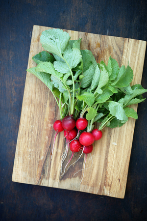Round red radish on the board
