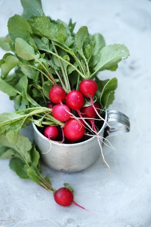 Radish in an metal cup