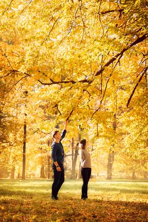 dance under the autumn fall