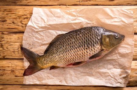 carp on parchment Stock fotó