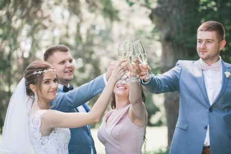 Brautpaar mit Gästen trinken Champagner im Park Standard-Bild