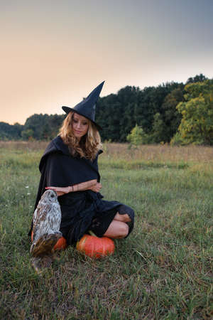 Witch in a field with an owl preparing for the Sabbath Stock Photo