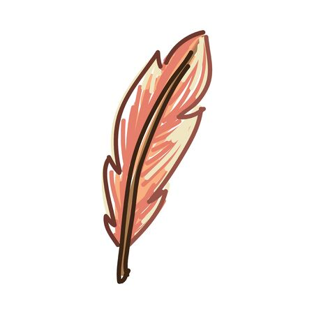 Feather in isolated vector design