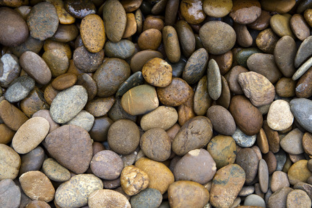 Background texture of swimming poolgarden pile of pebbles Stok Fotoğraf