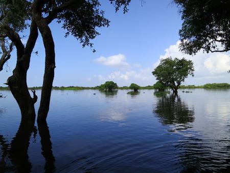 tonle sap: Sky reflected in water, Tonle Sap Stock Photo