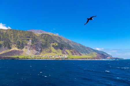 Edinburgh of the Seven Seas, the main and only town (settlement) of Tristan da Cunha, the most remote island. 1961 Volcano cone. View from the roadstead. Seagull, cormorant or gannet on foreground.