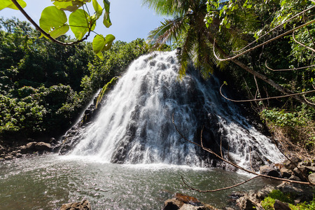 Kepirohi Waterfall in a jungle with palm trees around, near Nan Madol ruins, Pohnpei island, Federated states of Micronesia, Oceania. Banco de Imagens