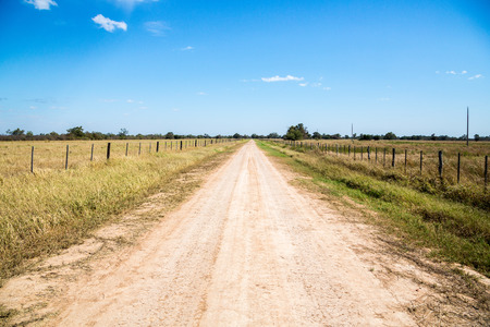 Country dirt road runs between farmlands under sunny deep blue sky on a winter day, near Filadelfia, in Deutsch mennonite colony Fernheim, Gran Chaco, Paraguay