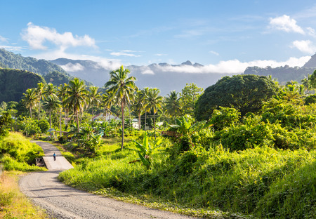 Volcanic hills, mountains, valleys, volcano mouth of beautiful green lush Ovalau island overgrown with palms, lost in jungle, covered with clouds, home of Levuka town. Fiji, Melanesia, Oceania.