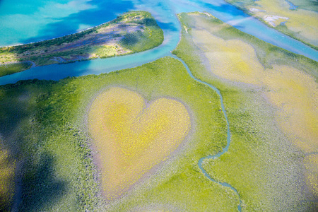 Heart of Voh, aerial view, formation of mangroves vegetation resembles a heart seen from above, New Caledonia, Micronesia, South Pacific Ocean. Heart of Earth. Earth day. Love life, save environment