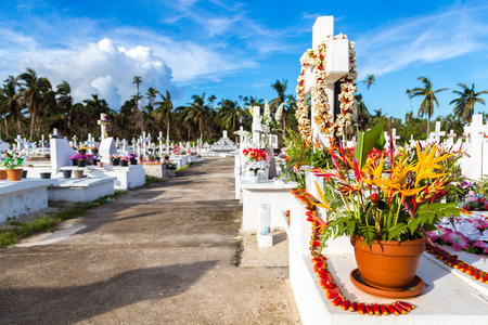White crosses of a christian cemetery, Uvea (Wallis) island, Wallis and Futuna territory (Wallis-et-Futuna), French overseas collectivity. Strelitzia flowers bouquet on a tomb on the foreground Imagens