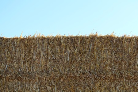 straw wall prepared to be eaten by animals