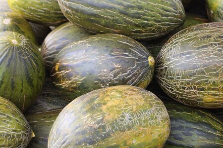 Extraordinary melons of beautiful color and delicious taste