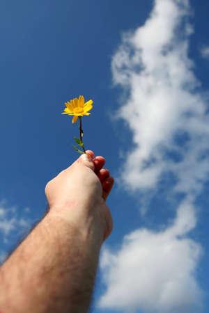 throw up: man holding flower against blue sky