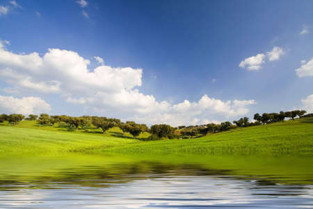 reflexion: la primavera de paisaje con agua reflexi�n