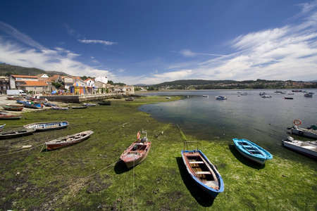 small wooden fishing boats in the harbour during low tide photo