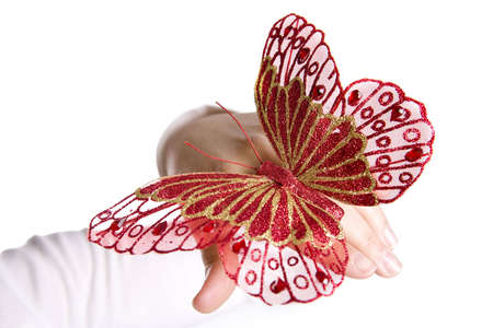 red butterfly in woman hand photo