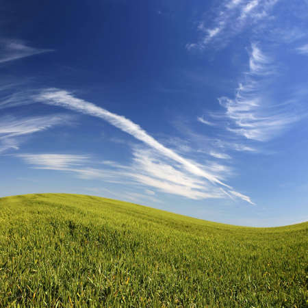 beautifull landscape with green grass and blue sky Stock Photo - 2988869