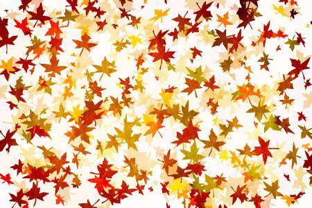 Mapple leafs Autumn Background Stock Photo - 3701852