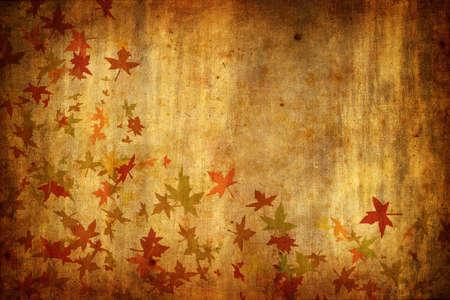 Mapple Leafs Autumn Background Stock Photo - 3701853