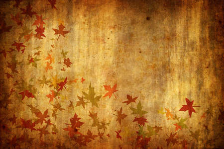 Mapple Leafs Autumn Background Stock Photo - 3701853