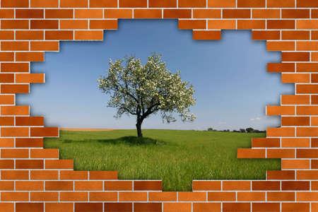 beautiful landscape behind broken brick wall photo