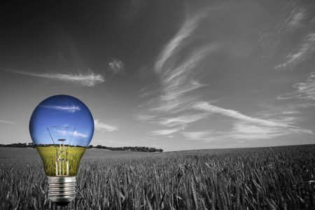 black and white landcape with colorful blue light bulb - environmental concept