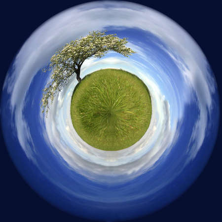 spring landscape in a sphere with a lonely tree - environmental concept Stock Photo - 4143589