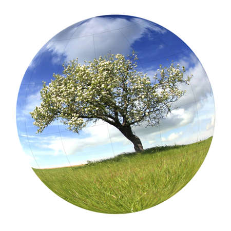 Globe with spring landscape - environment concept Stock Photo - 4509938