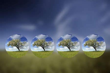 Summer landscape with small globes inside - environment concept Stock Photo - 4509939