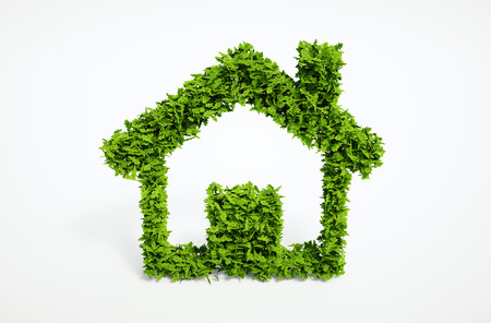 Isolated 3d render natural leaf home symbol with white background