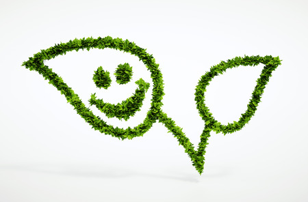 Isolated 3d render natural leaf with smiley with white background - blank text field for your own text 免版税图像