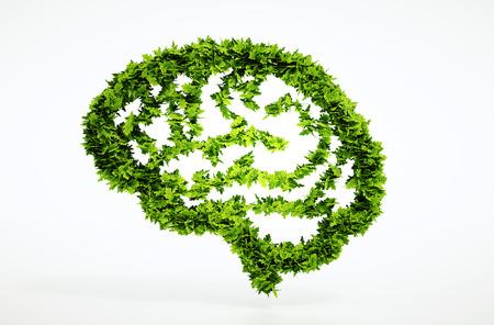 エコ自然知性の概念