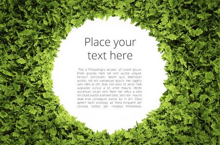 간단한 텍스트 패턴 에코 원형 텍스트 프레임 - 포함 녹색 잎 모양의 클리핑 패스