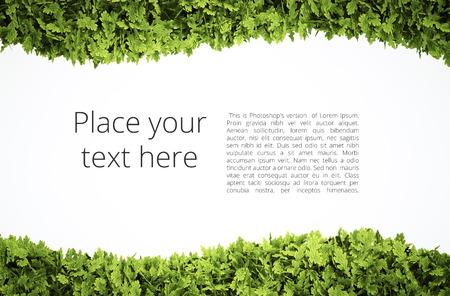 単純なテキスト パターン - 含まれている緑の葉の形のクリッピング ・ パスを持つエコ テキスト枠