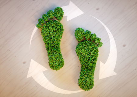 green footprint: Green footprint concept Stock Photo