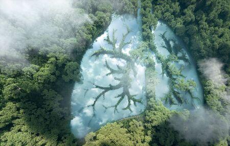 Groene longen van de planeet aarde. 3D-weergave van een schoon meer in de vorm van longen in het midden van oerwoud. Concept van natuur- en regenwoudbescherming, natuurademhaling en natuurlijke co2-reductie.