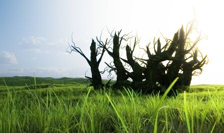 An old dying tree surrounded by a large meadow. The concept of nature's ability to regenerate and renew. 3d illustration. Foto de archivo
