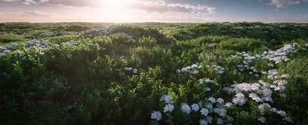 Spacious fresh grass landscape in beautiful morning light. 3d rendering. Foto de archivo