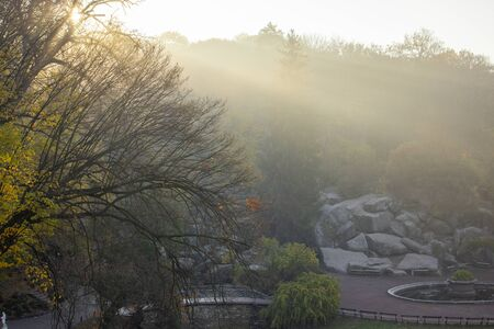 the sun rays between the fog on the hill in the dendrological park early in the morning. Autumn landscape. Stok Fotoğraf