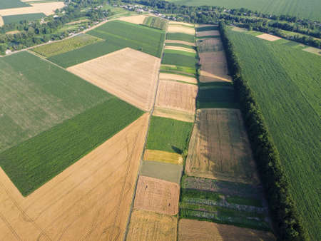 Small plots of land are sown with different crops. Agricultural land.