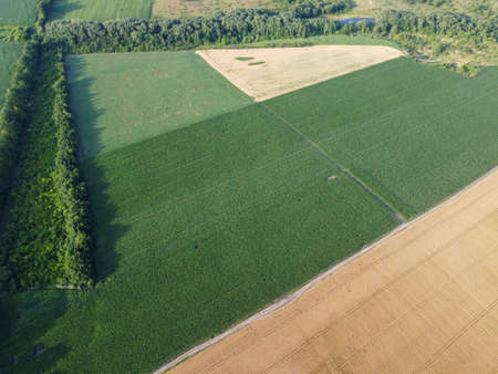 Agricultural landscape, aerial view of farm fields