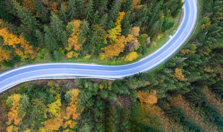 Road through the forest, top view, from a bird's eye view of a quadcopter. 免版税图像