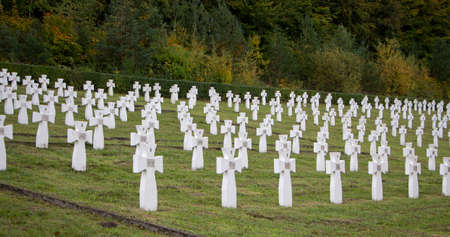 Evenly spaced crosses with burial in the cemetery.