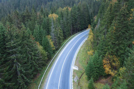 The road passes through a dense forest in the mountains.