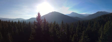 The sun rising from behind the mountains, a view of the top of the mountain which is followed by the tops of the trees.