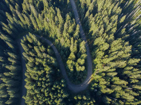Aerial view over mountain road going through forest landscape 免版税图像