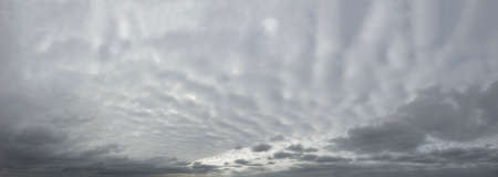 Panorama of gray dramatic sky with wavy thick clouds.