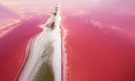The background of the pink water of the pink lake and the elongated protrusion of the island formed of salt and sand