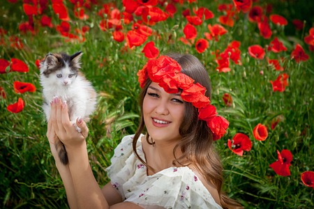 beautiful  woman sitting in the poppy flower plays with a kitten photo